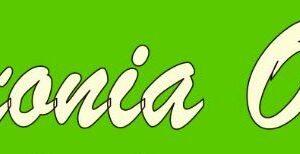 saxonia-open_tsc-silberpfeil-pirna